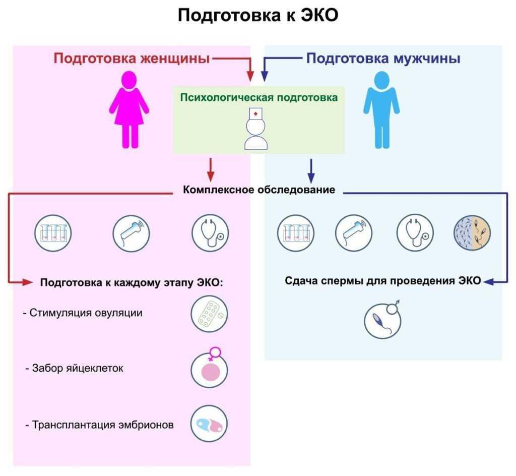 Заморозка яйцеклеток: криоконсервация – как замораживают и до какого возраста, сколько лет может храниться в криобанке, витрификация