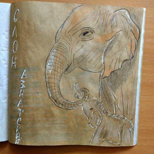 Как научиться рисовать красками: применение гуаши, акрила и масла начинающими художниками