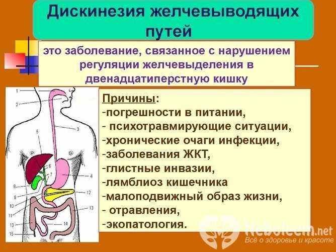 Психосоматика заболеваний желчного пузыря, причины возникновения, методы лечения