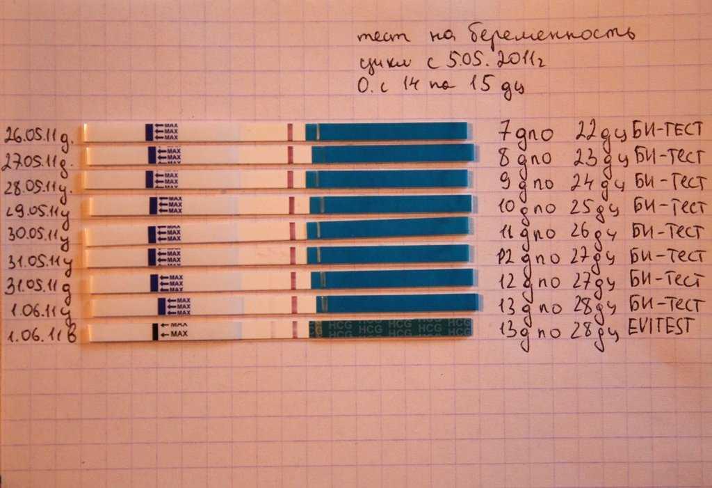 Через сколько дней после беременности тест покажет результат?