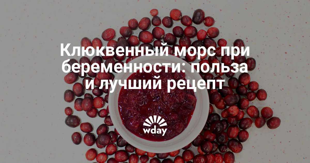 Когда свежие ягоды клюквы полезны для беременной, а когда только вредят: сушенные ягоды или морс, компот или чай
