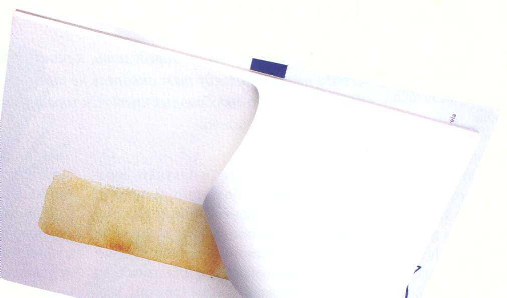 Бумага для акварели – лучшие варианты: плотность хлопковой бумаги, какие папки и альбомы а2, а3 и а4 выбрать