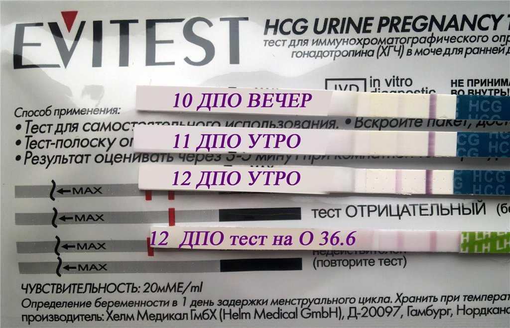 Через сколько дней тест покажет беременность после зачатия, задержки, овуляции