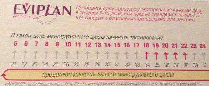 Когда овуляция при цикле в 23 дня, нормально ли, если период между месячными длится 21-22 суток, как рассчитать благоприятное время для зачатия ребенка?