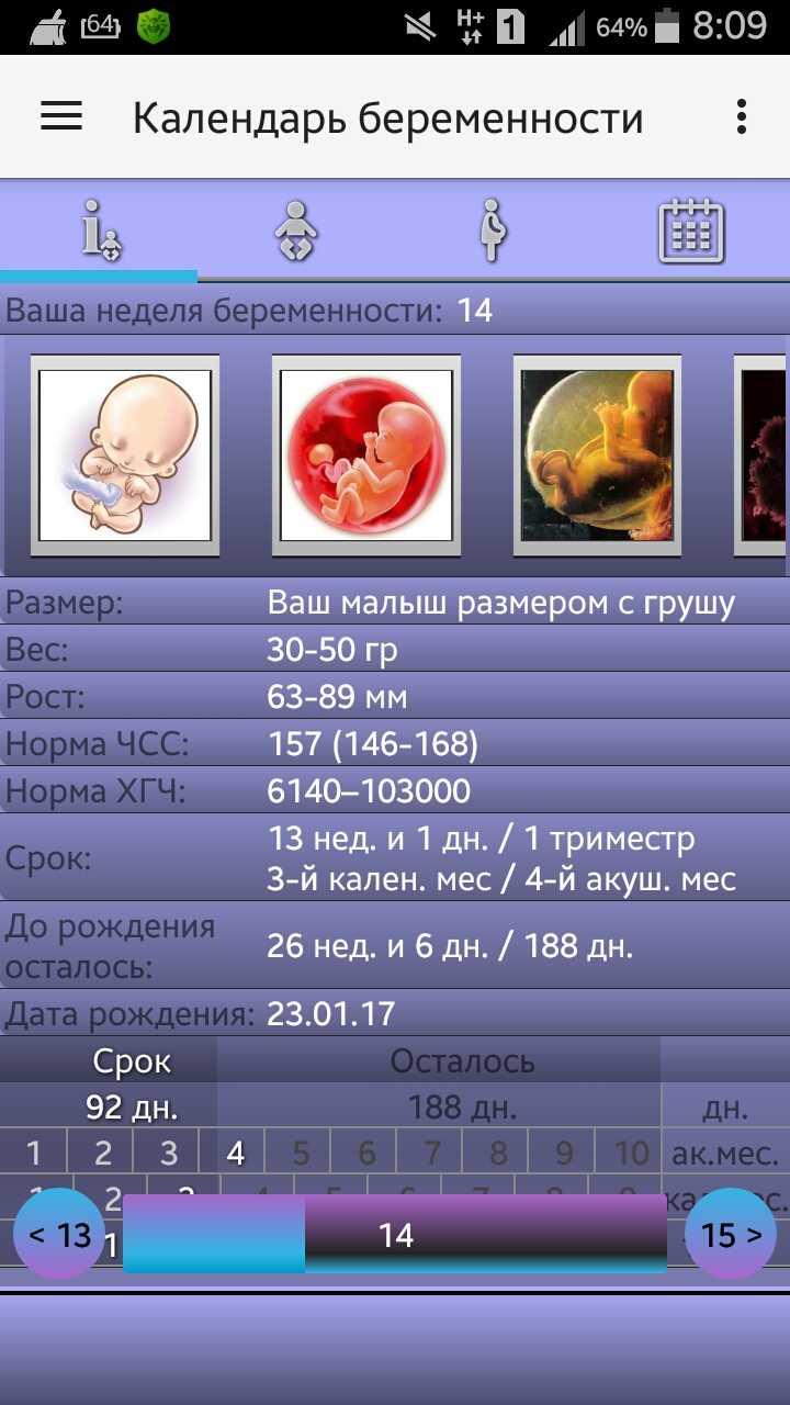 Онлайн калькулятор-календарь беременности
