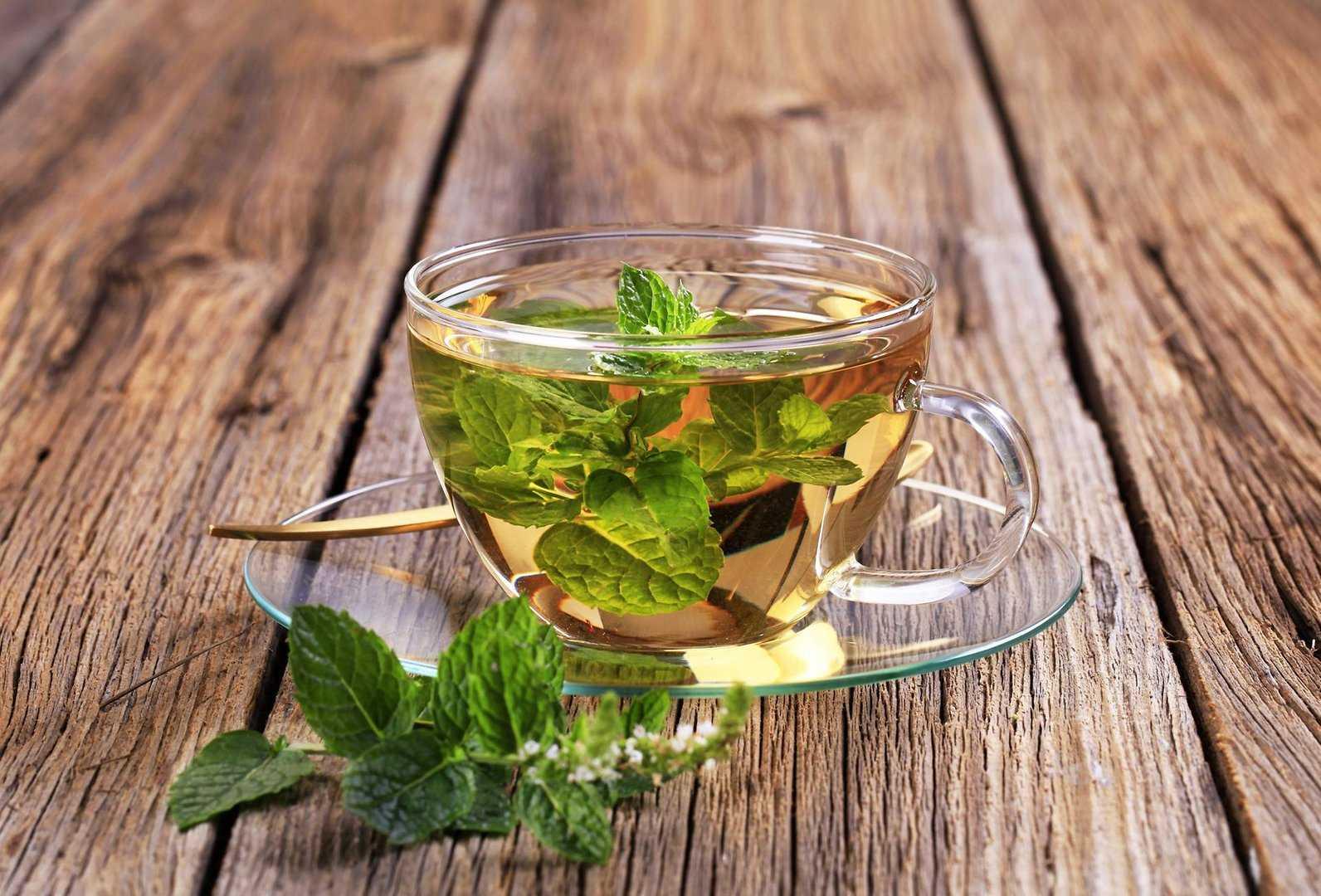 Малина при беременности: на ранних и поздних сроках, как принимать, листья, чай, можно ли, отвар, противопоказания, польза и вред