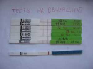 Тест на овуляцию показывает беременность - планирование беременности - страна мам