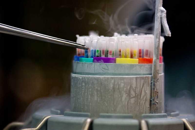Зачем и кому может понадобиться заморозка яйцеклеток