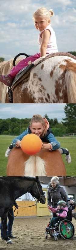 Лечение лошадьми: психологическое и физиологическое действие на людей