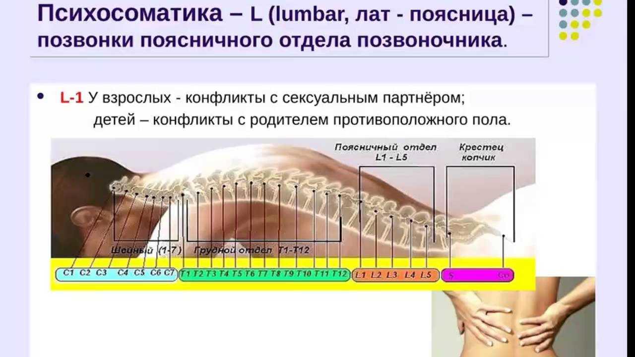 Психосоматика седалищного нерва, причины по мнению лиз бурбо, синельникова, луизы хей