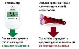 Норма гемоглобина у беременной - норма, возможные отклонения, лечение