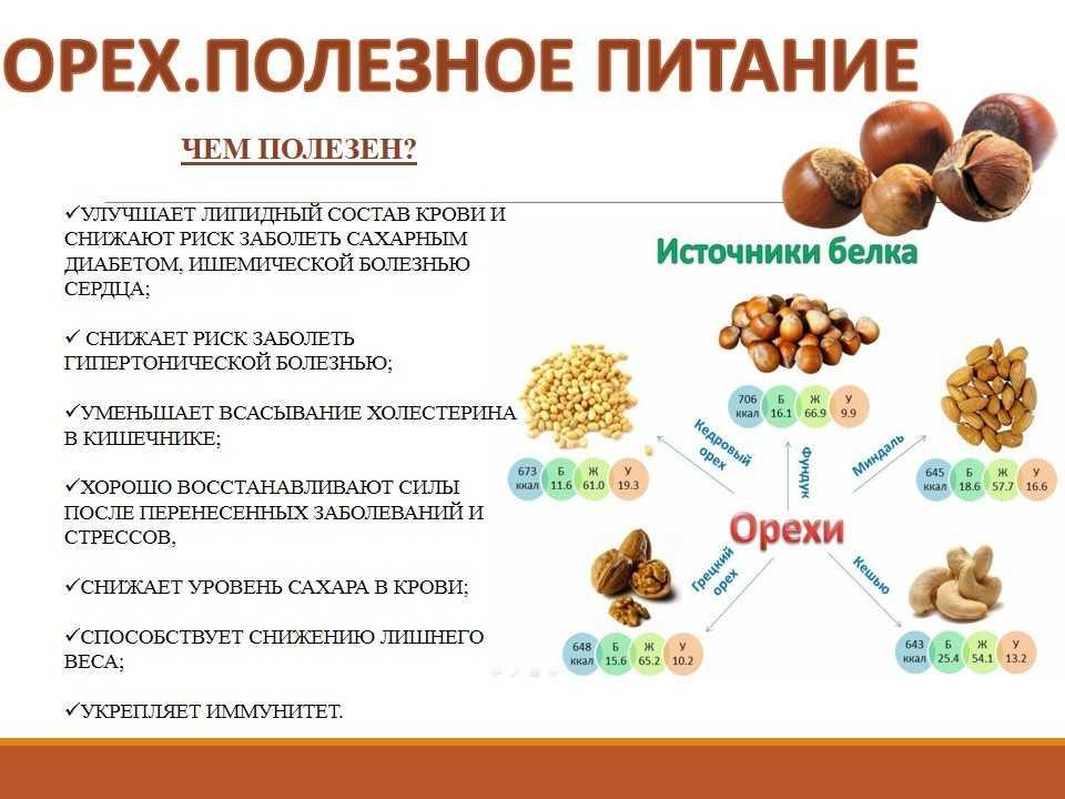 Можно ли детям грецкие орехи: с какого возраста, польза и вред, можно ли давать годовалому ребенку