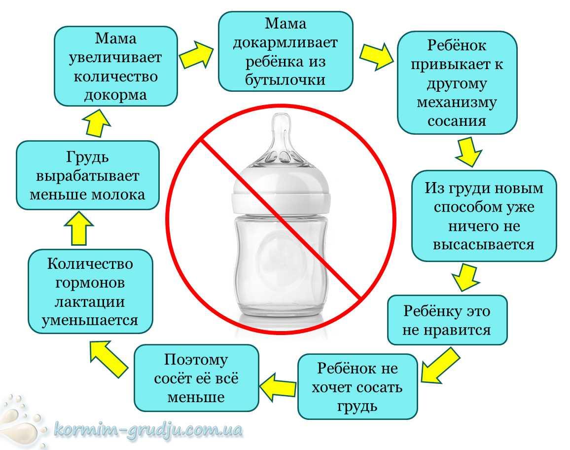 Свойства и состав грудного молока женщины