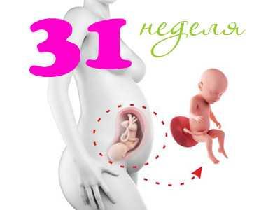 29 неделя беременности: что происходит с плодом и будущей мамой?