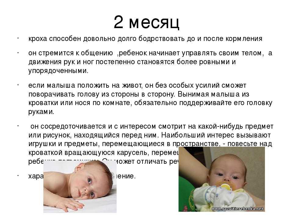 Когда ребёнок начинает держать голову - развитие ребенка