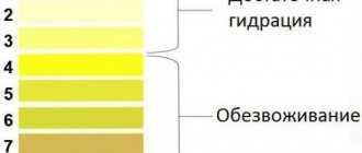 почему моча может быть ярко-желтого цвета. жёлтая моча у женщин: причины, возможные заболевания и их лечение