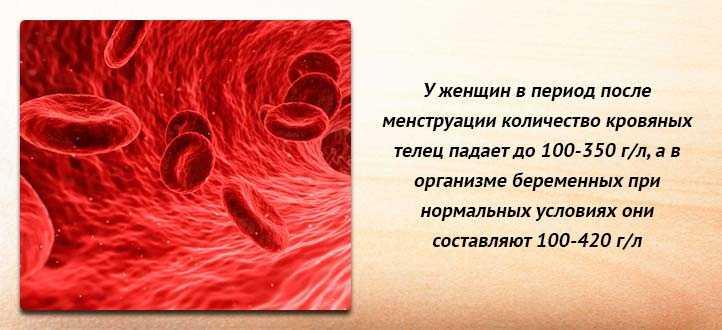 Как поднять уровень тромбоцитов в крови