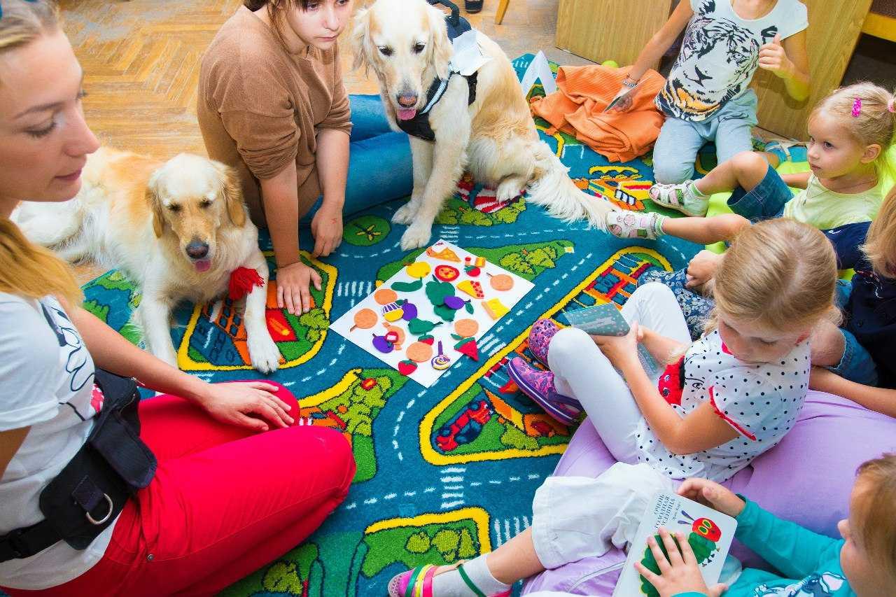 Что такое канистерапия, или социализация детей с аутичным спектром при помощи собак-помощников