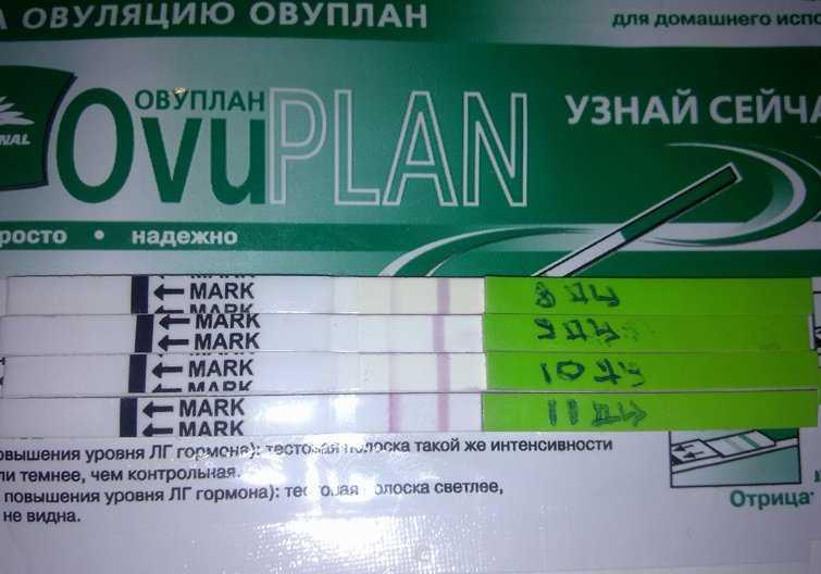 Действительно ли тест eviplan помогает определить овуляцию