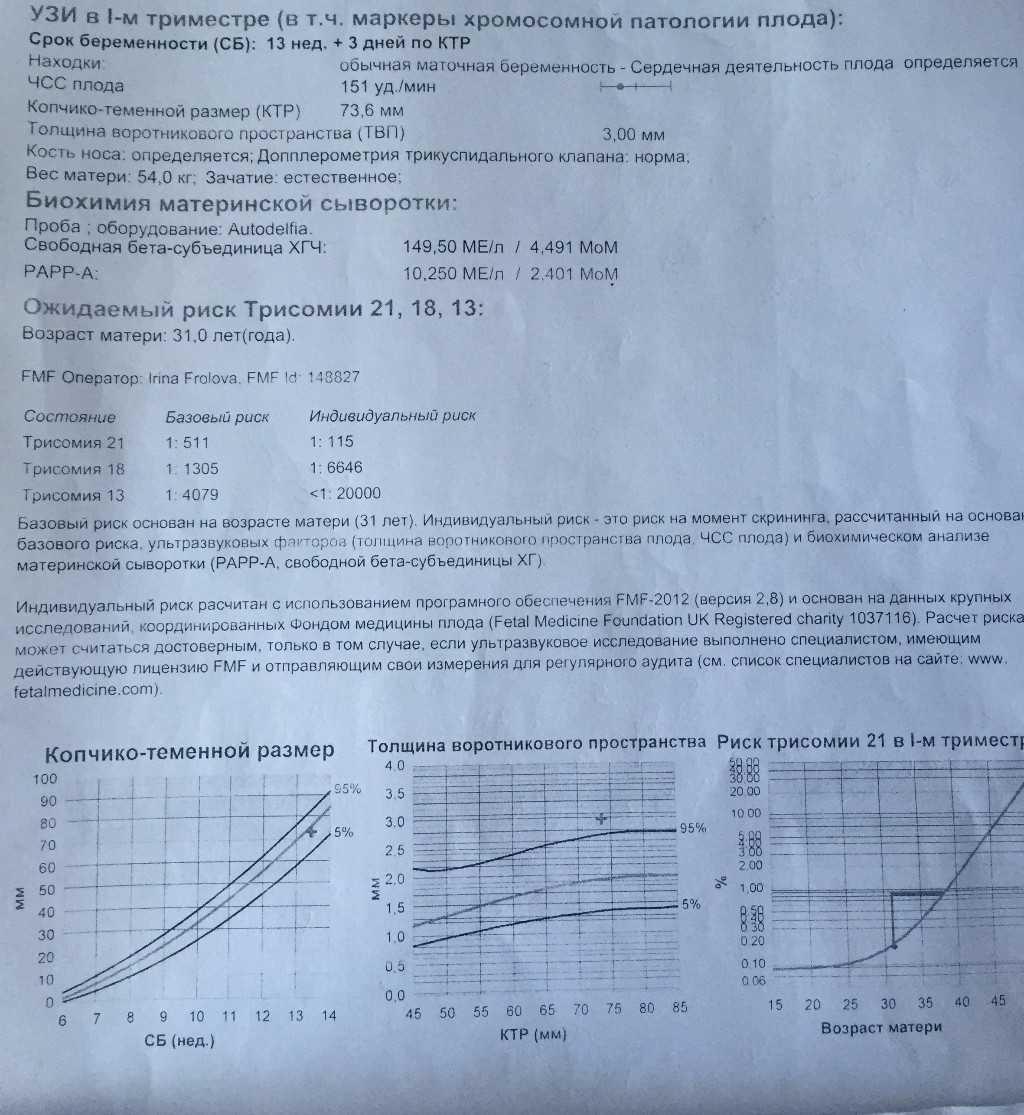 Скрининг 2 триместра (39 фото): сроки проведения второго узи при беременности, что это такое и что смотрят, нормы и расшифровка результатов