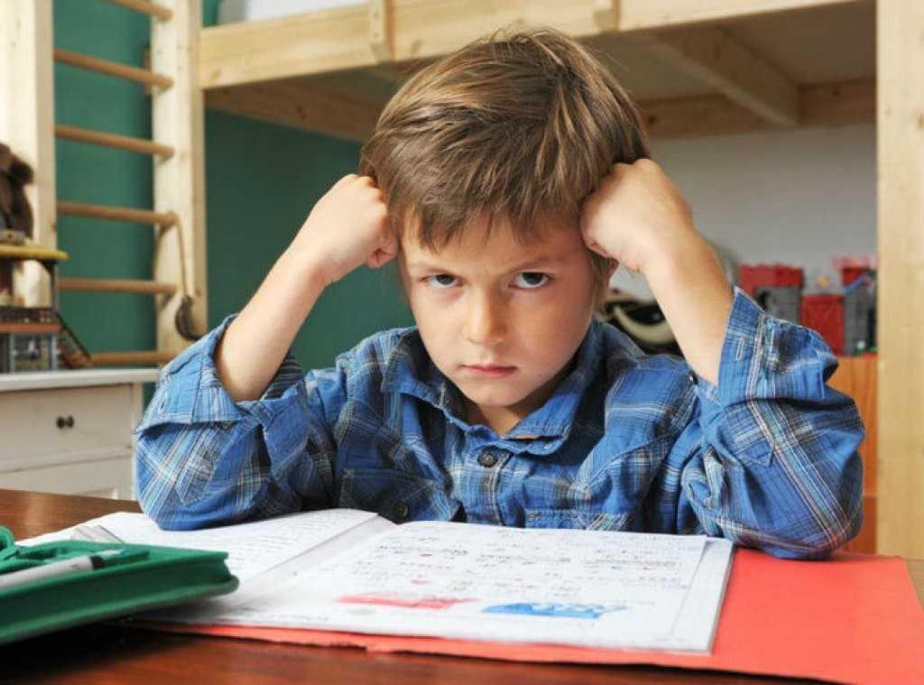 Что делать, если ребенок не хочет учиться: советы психологов