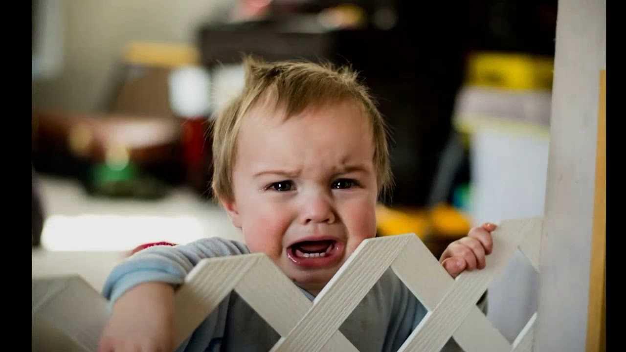 Детские капризы - причины, как бороться с детскими капризами