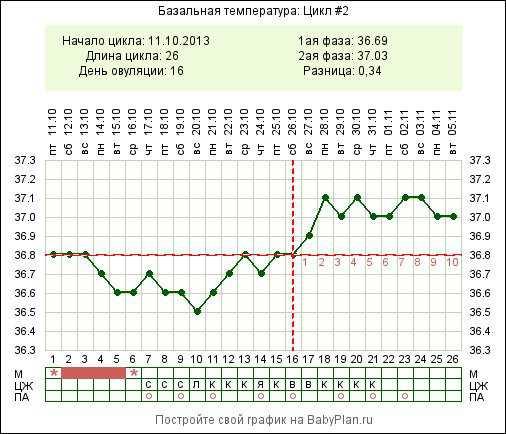 Базальная температура при овуляции: какая должна быть, как правильно измерять и вести график?