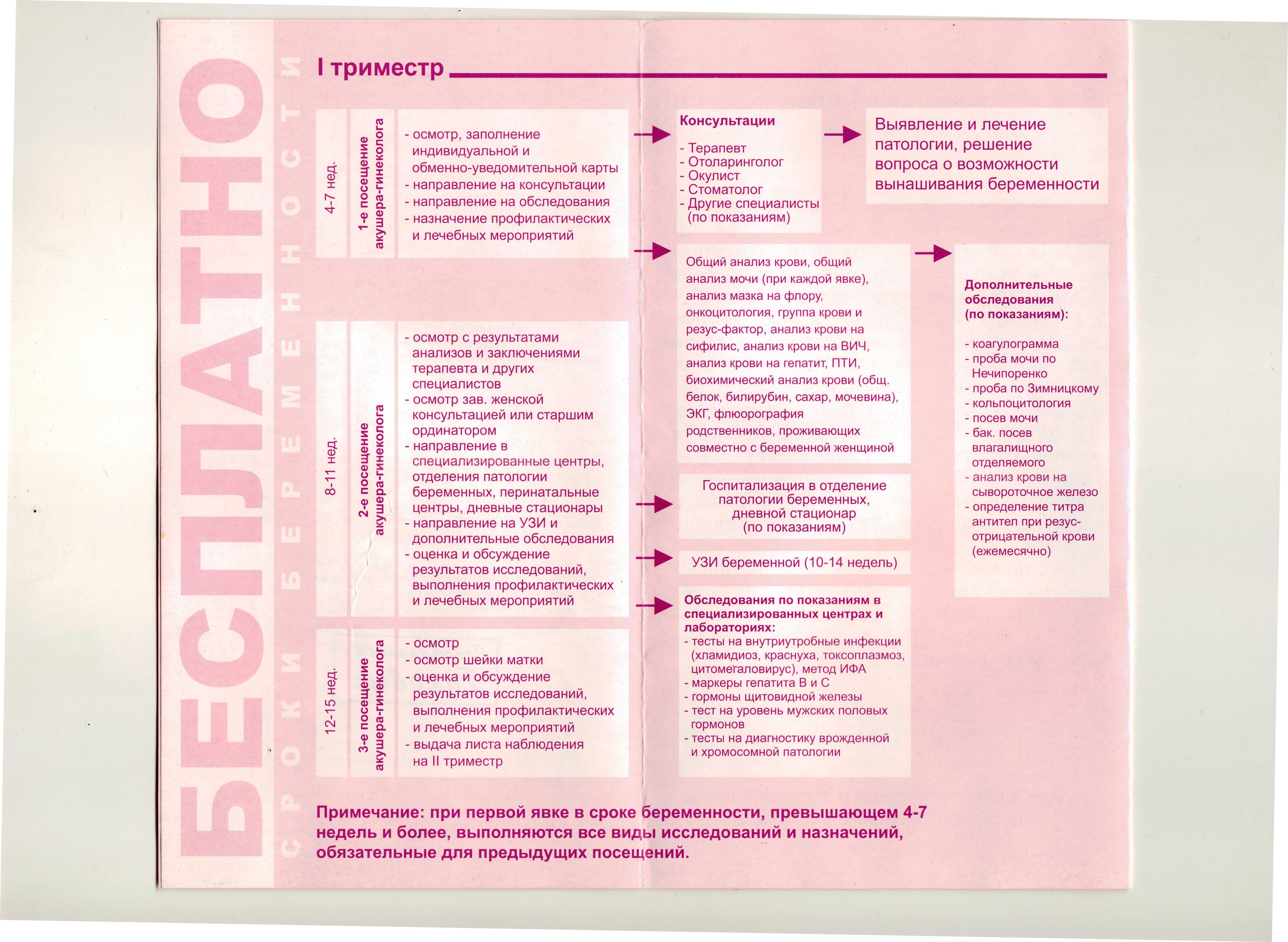 Анализы в первый триместр беременности: список