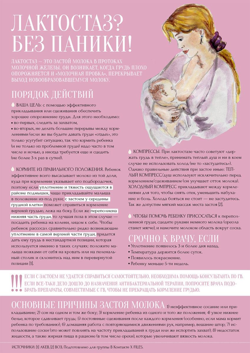 Сцеживание грудного молока   nashy-detky.com.ua