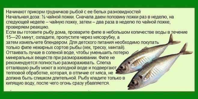 С какого возраста можно давать рыбу ребенку   уроки для мам