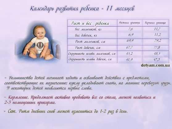 Развитие ребенка в 11 месяцев: что должен уметь, меню и режим дня малыша