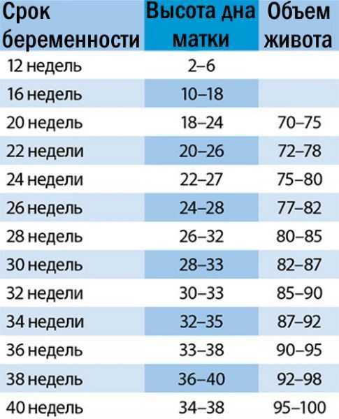 Вдм при беременности по неделям. таблица, что это такое, расшифровка, окружность живота, норма
